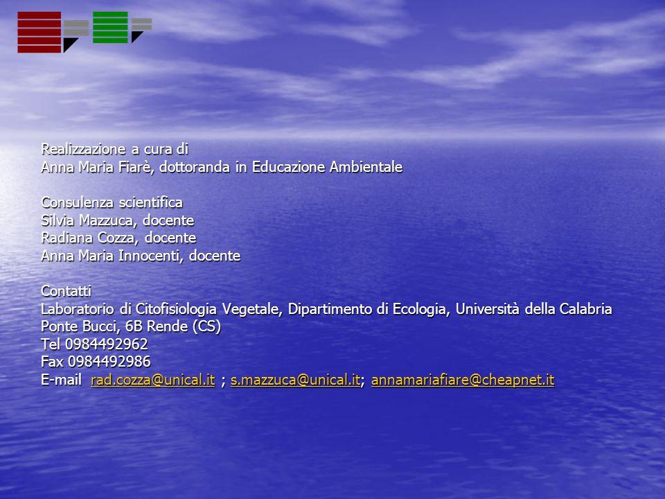 Realizzazione a cura di Anna Maria Fiarè, dottoranda in Educazione Ambientale Consulenza scientifica Silvia Mazzuca, docente Radiana Cozza, docente An