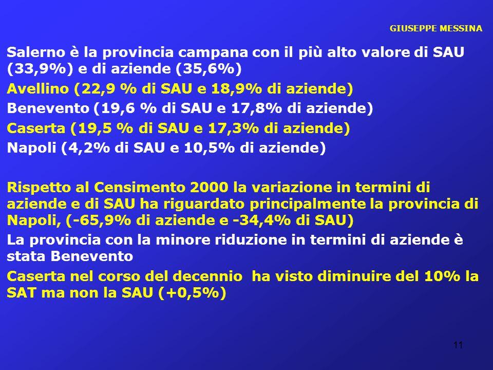 GIUSEPPE MESSINA Salerno è la provincia campana con il più alto valore di SAU (33,9%) e di aziende (35,6%) Avellino (22,9 % di SAU e 18,9% di aziende)
