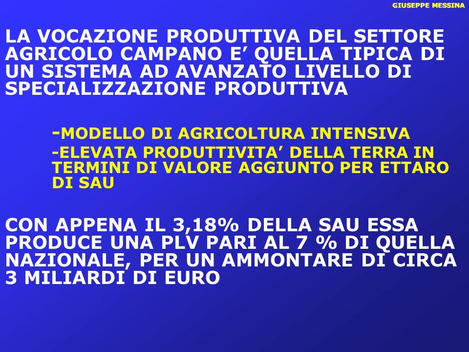 GIUSEPPE MESSINA GLI ORIENTAMENTI PRODUTTIVI CHE MAGGIORMENTE CARATTERIZZANO L'AGRICOLTURA CAMPANA SONO : L'ORTOFRUTTICOLTURAL'ORTOFRUTTICOLTURA LA FRUTTALA FRUTTA LE COLTURE INDUSTRIALILE COLTURE INDUSTRIALI l'INCIDENZA DEL SETTORE AGRICOLO CAMPANO SULL'ECONOMIA REGIONALE E' PARI AL 2,3% MEDIA NAZIONALE 1,8%; MEZZOGIORNO 2,9% l'INCIDENZA DEL SETTORE AGRICOLO CAMPANO SULL'ECONOMIA REGIONALE E' PARI AL 2,3% MEDIA NAZIONALE 1,8%; MEZZOGIORNO 2,9%