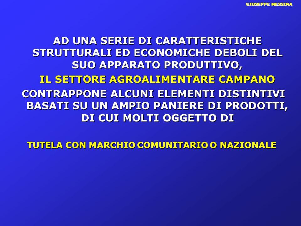 GIUSEPPE MESSINA IN CAMPANIA IL COMPARTO AGRICOLO SI CONCENTRA SI CONSOLIDA E CRESCE (in provincia di Napoli tende a scomparire) 17