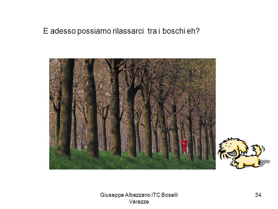 Giuseppe Albezzano ITC Boselli Varazze 34 E adesso possiamo rilassarci tra i boschi eh?