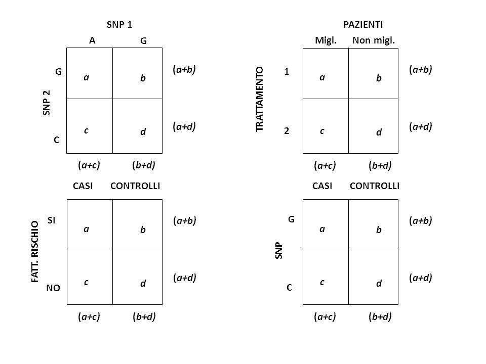 SNP 1 SNP 2 G C A G a b c d (a+c)(b+d) (a+b) (a+d) a b c d (a+c)(b+d) (a+b) (a+d) a b c d (a+c)(b+d) (a+b) (a+d) a b c d (a+c)(b+d) (a+b) (a+d) PAZIEN