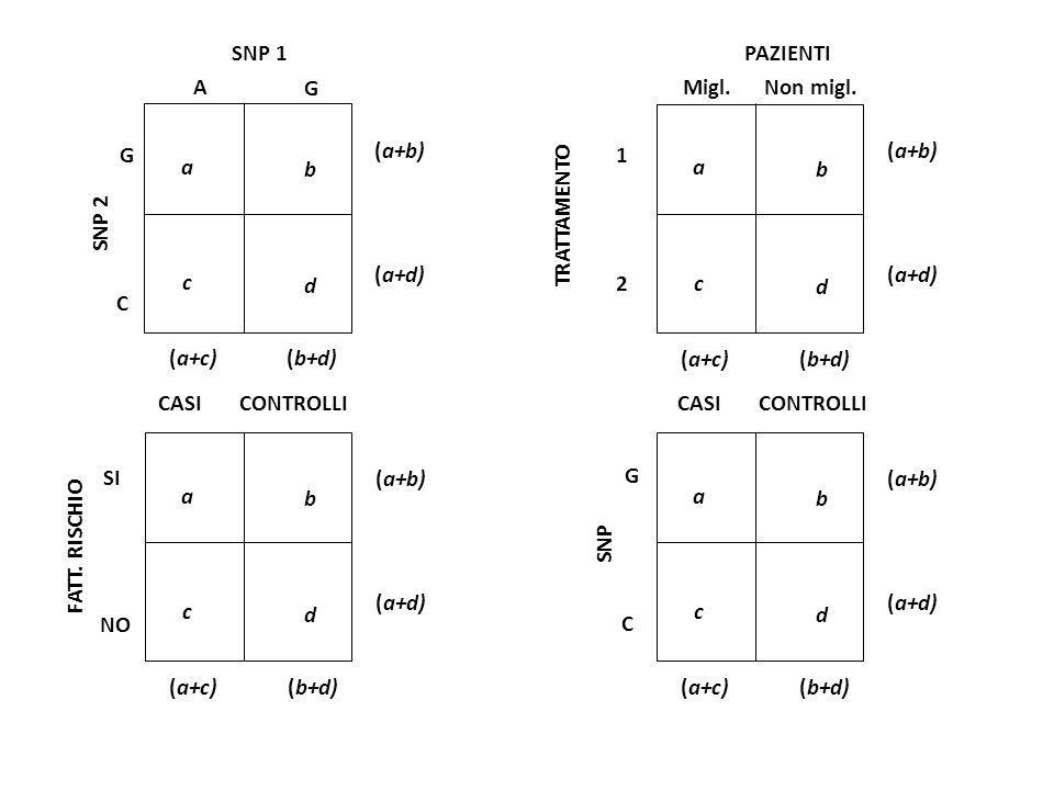 SNP 1 SNP 2 G C A G a b c d (a+c)(b+d) (a+b) (a+d) a b c d (a+c)(b+d) (a+b) (a+d) a b c d (a+c)(b+d) (a+b) (a+d) a b c d (a+c)(b+d) (a+b) (a+d) PAZIENTI Migl.Non migl.