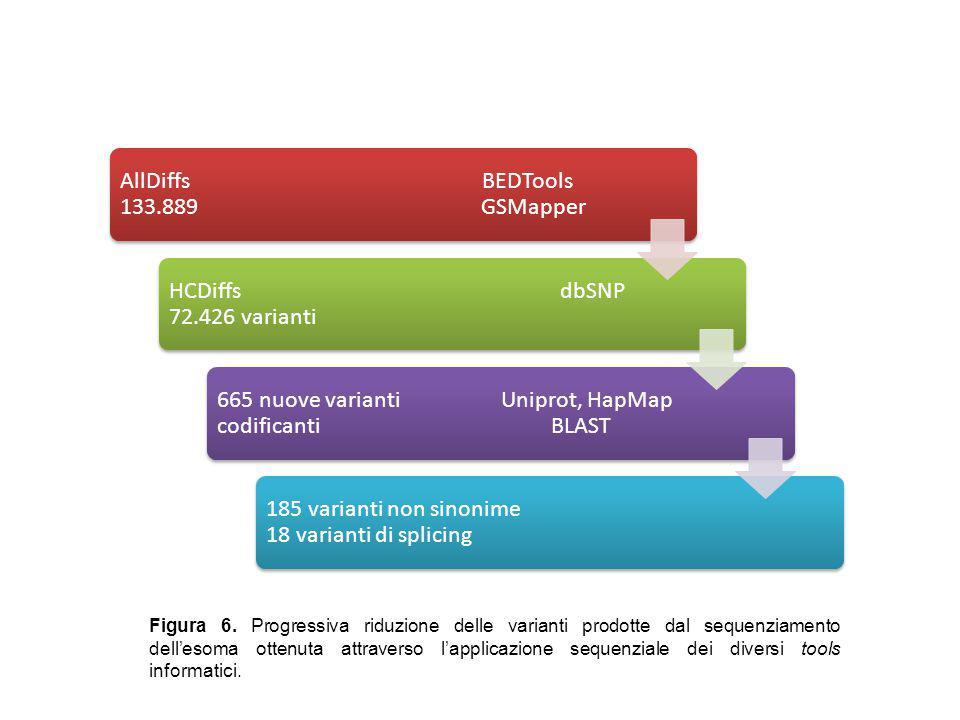 Filtraggio delle varianti AllDiffs BEDTools 133.889 GSMapper HCDiffs dbSNP 72.426 varianti 665 nuove varianti Uniprot, HapMap codificanti BLAST 185 va