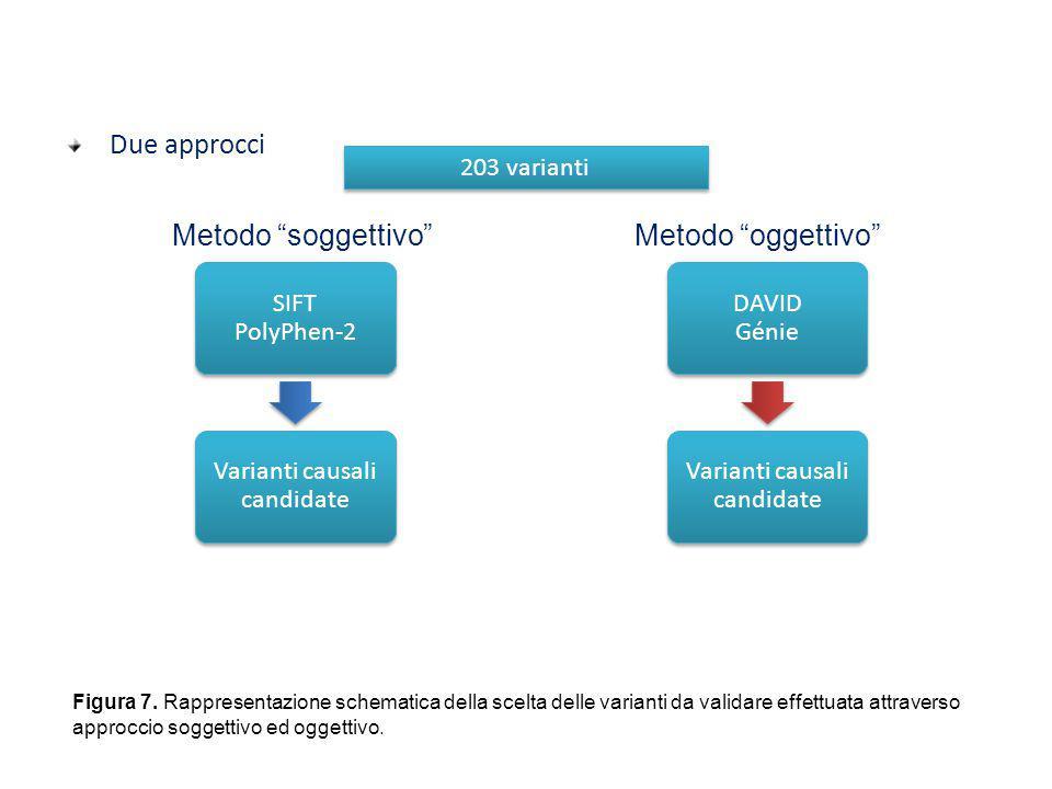 Prioritizzazione delle varianti filtrate Due approcci SIFT PolyPhen-2 Varianti causali candidate DAVID Génie Varianti causali candidate Metodo soggettivo Metodo oggettivo 203 varianti Figura 7.