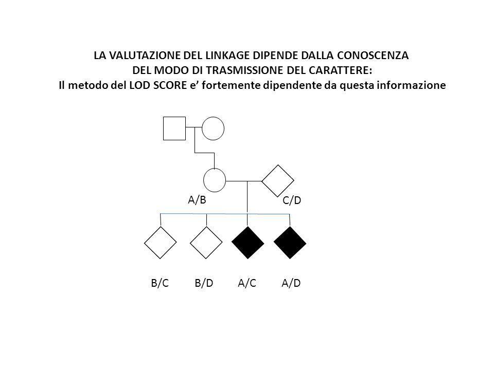 A/B C/D A/CA/DB/CB/D LA VALUTAZIONE DEL LINKAGE DIPENDE DALLA CONOSCENZA DEL MODO DI TRASMISSIONE DEL CARATTERE: Il metodo del LOD SCORE e' fortemente dipendente da questa informazione