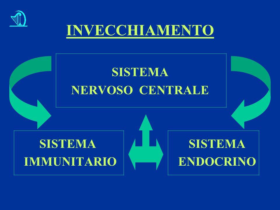 INVECCHIAMENTO SISTEMA NERVOSO CENTRALE SISTEMA SISTEMA IMMUNITARIO ENDOCRINO