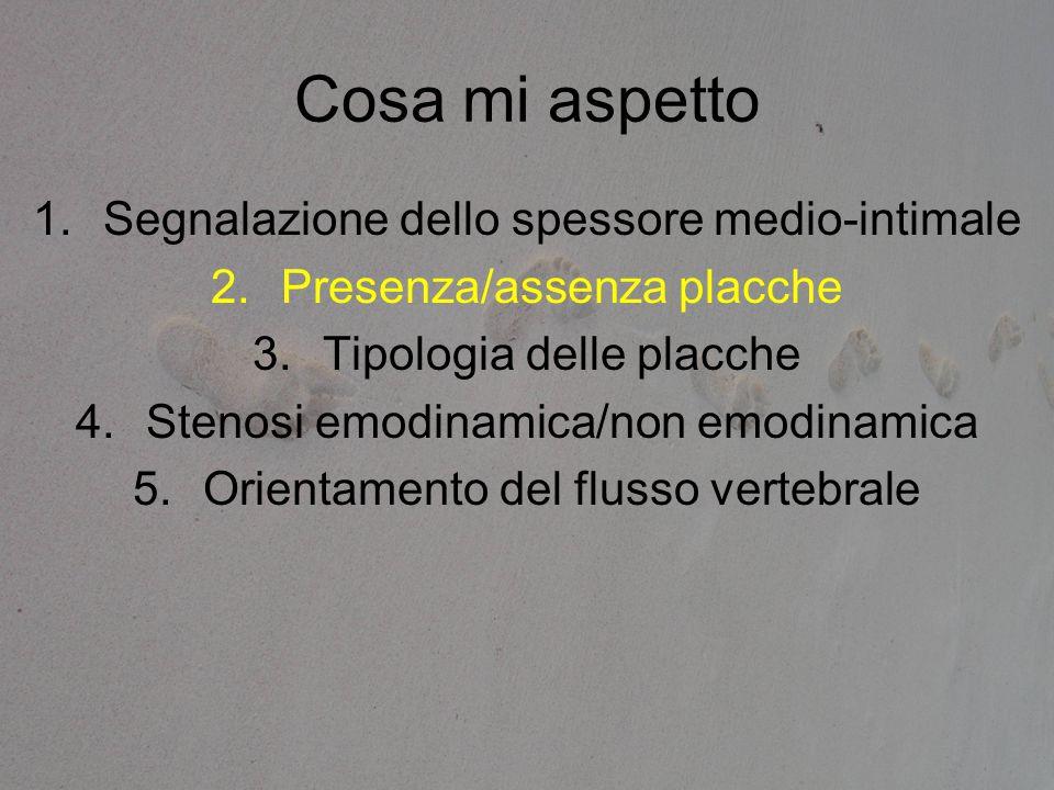 Cosa mi aspetto 1.Segnalazione dello spessore medio-intimale 2.Presenza/assenza placche 3.Tipologia delle placche 4.Stenosi emodinamica/non emodinamic