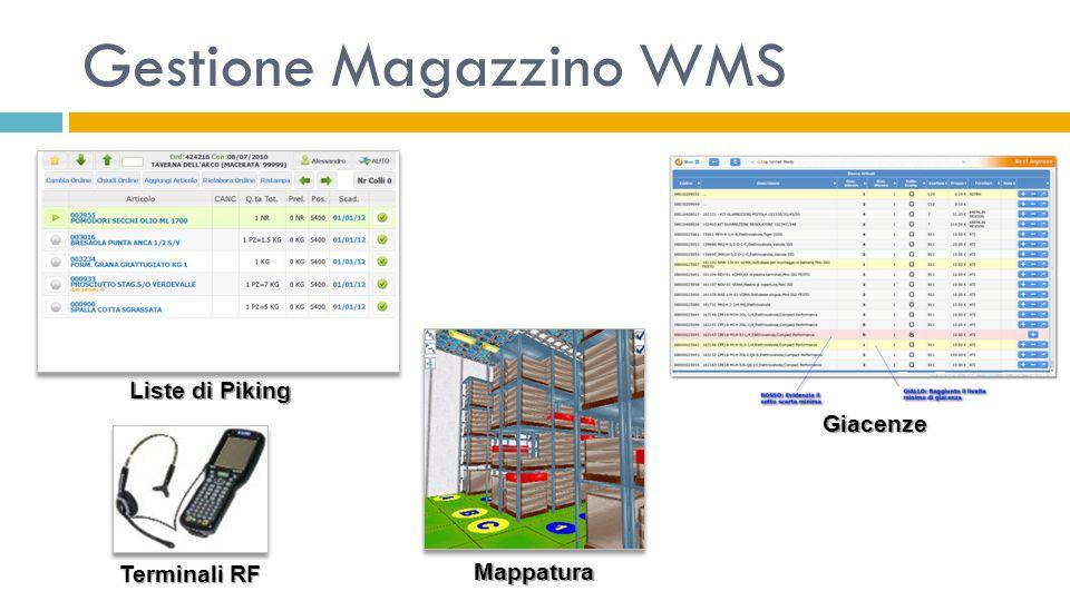 Gestione Magazzino WMS Liste di Piking Giacenze Mappatura Terminali RF