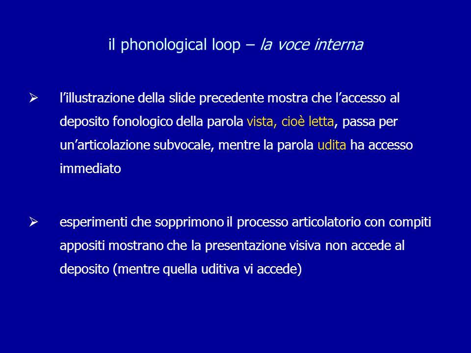 il phonological loop – la voce interna  l'illustrazione della slide precedente mostra che l'accesso al deposito fonologico della parola vista, cioè l