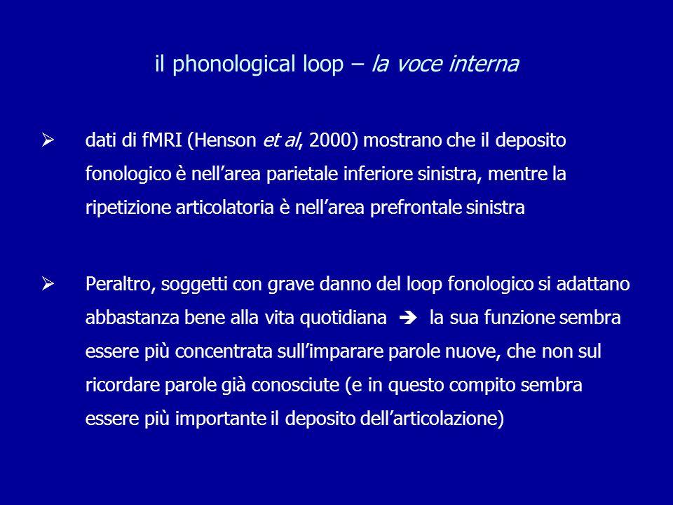il phonological loop – la voce interna  dati di fMRI (Henson et al, 2000) mostrano che il deposito fonologico è nell'area parietale inferiore sinistr
