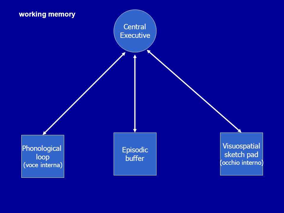 MEMORIA ESPLICITA ED IMPLICITA Da Graf e Schachter (1985):  Explicit memory is revealed when performance on a task requires conscious recollection of previous experience facilitated in the absence  Implicit memory is revealed when performance on a task is facilitated in the absence of conscious recollection