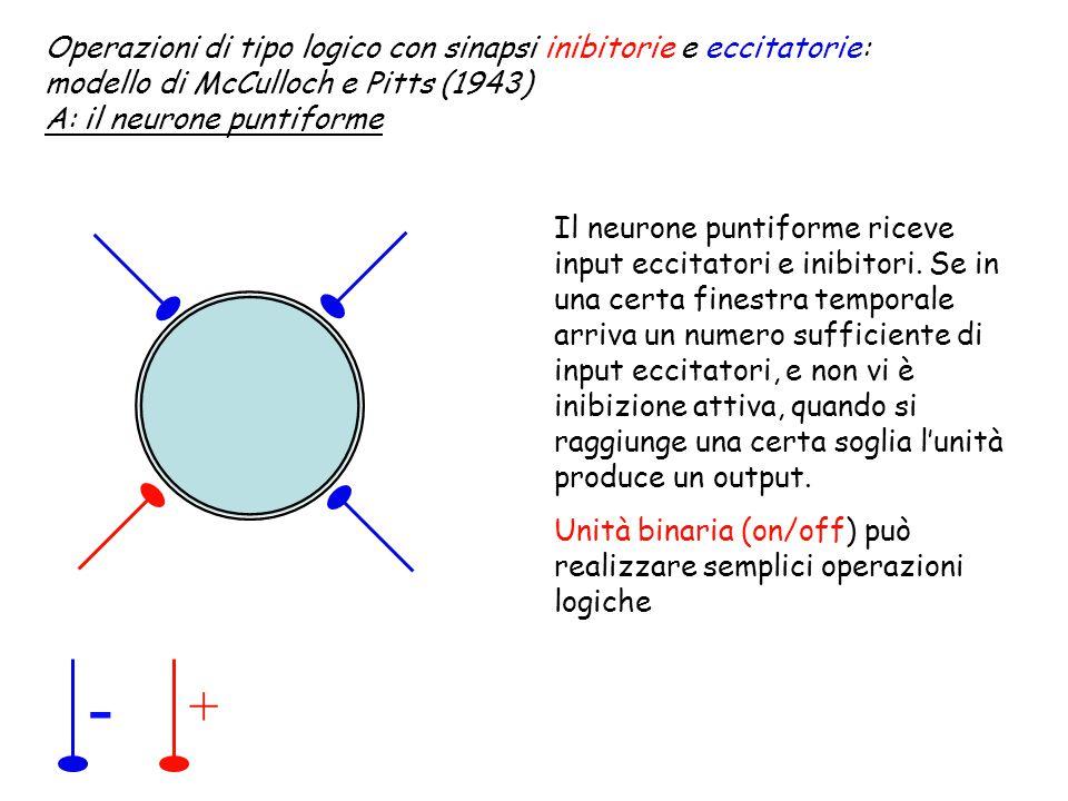 - + Operazioni di tipo logico con sinapsi inibitorie e eccitatorie: modello di McCulloch e Pitts (1943) A: il neurone puntiforme Il neurone puntiforme riceve input eccitatori e inibitori.