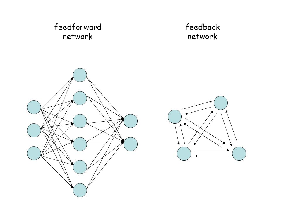 feedforward network feedback network
