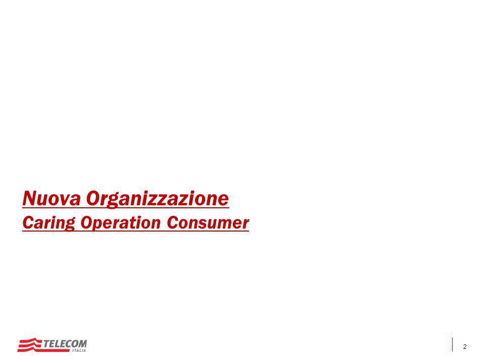 2 Nuova Organizzazione Caring Operation Consumer