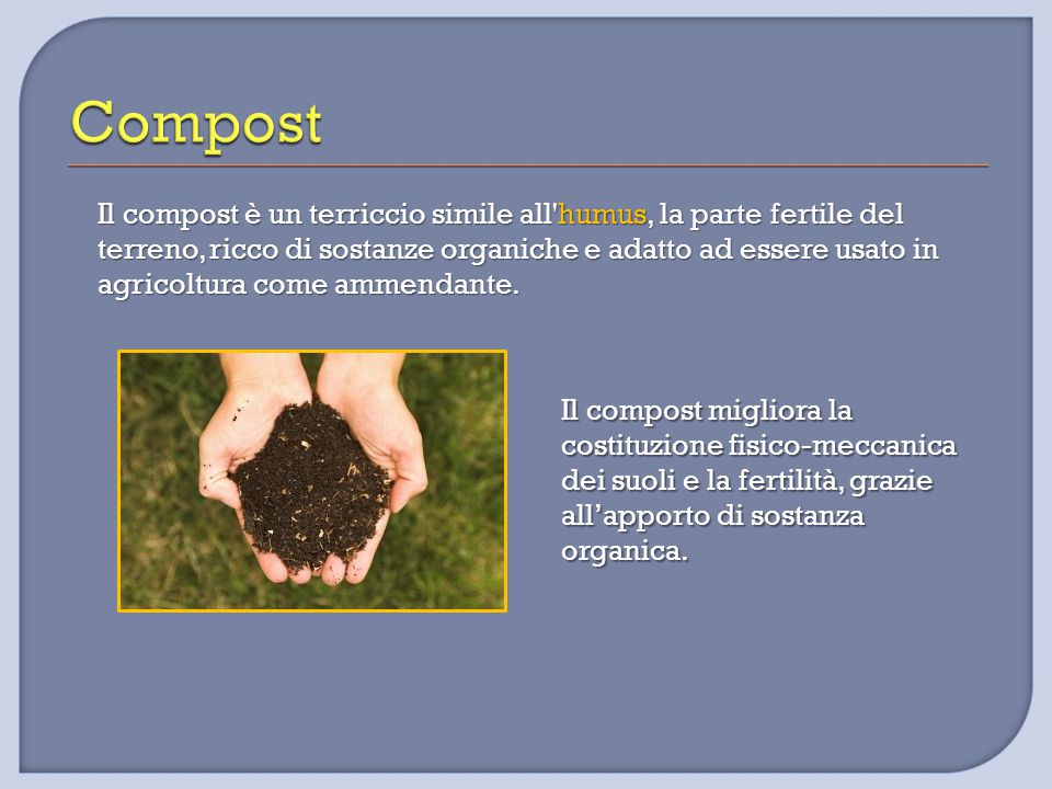 Il compost è un terriccio simile all'humus, la parte fertile del terreno, ricco di sostanze organiche e adatto ad essere usato in agricoltura come amm
