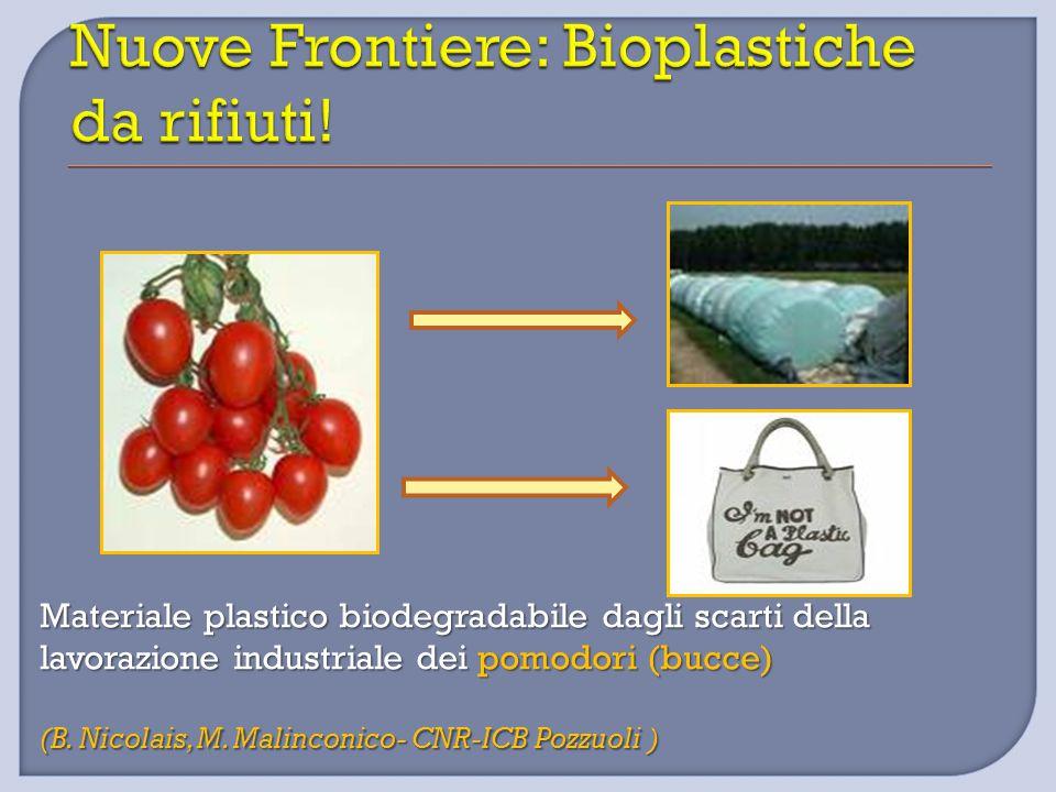 Materiale plastico biodegradabile dagli scarti della lavorazione industriale dei pomodori (bucce) (B. Nicolais, M. Malinconico- CNR-ICB Pozzuoli )