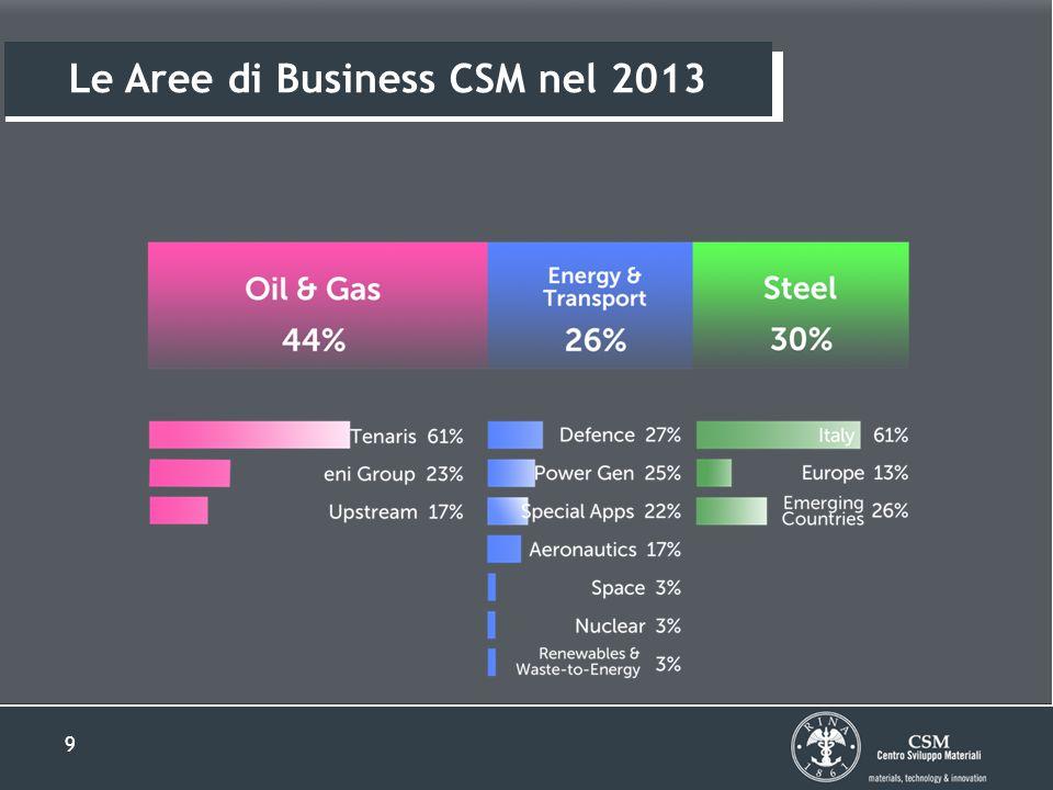 9 Le Aree di Business CSM nel 2013