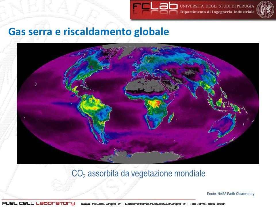 CO 2 assorbita da vegetazione mondiale Fonte: NASA Earth Observatory
