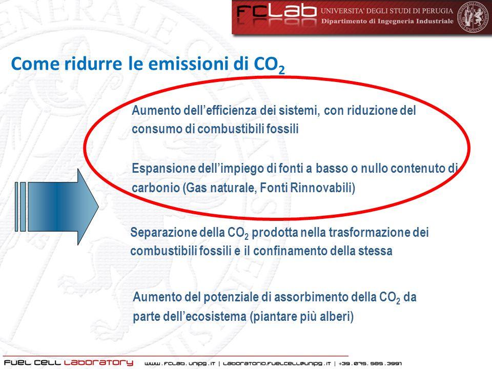 Aumento del potenziale di assorbimento della CO 2 da parte dell'ecosistema (piantare più alberi) Separazione della CO 2 prodotta nella trasformazione