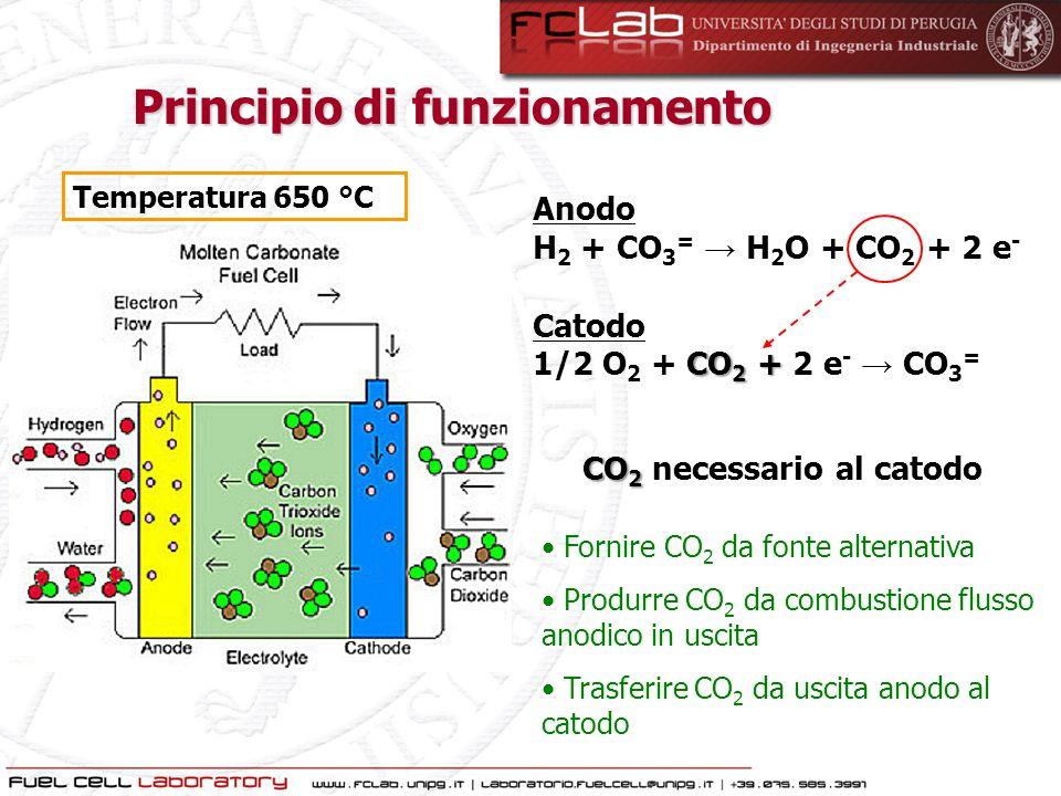 Fornire CO 2 da fonte alternativa Produrre CO 2 da combustione flusso anodico in uscita Trasferire CO 2 da uscita anodo al catodo Principio di funzion