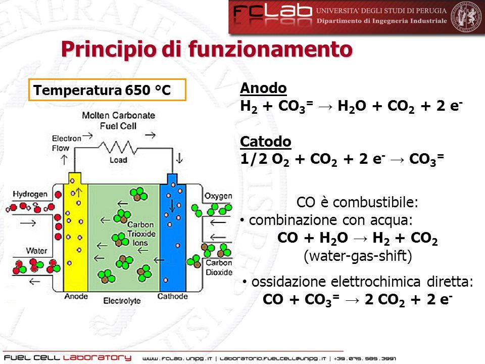 Anodo H 2 + CO 3 = → H 2 O + CO 2 + 2 e - Catodo 1/2 O 2 + CO 2 + 2 e - → CO 3 = CO è combustibile: combinazione con acqua: CO + H 2 O → H 2 + CO 2 (w