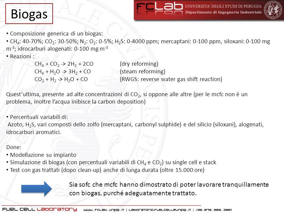 Composizione generica di un biogas: CH 4 : 40-70%; CO 2 : 30-50%; N 2 : O 2 : 0-5%; H 2 S: 0-4000 ppm; mercaptani: 0-100 ppm, siloxani: 0-100 mg m -3