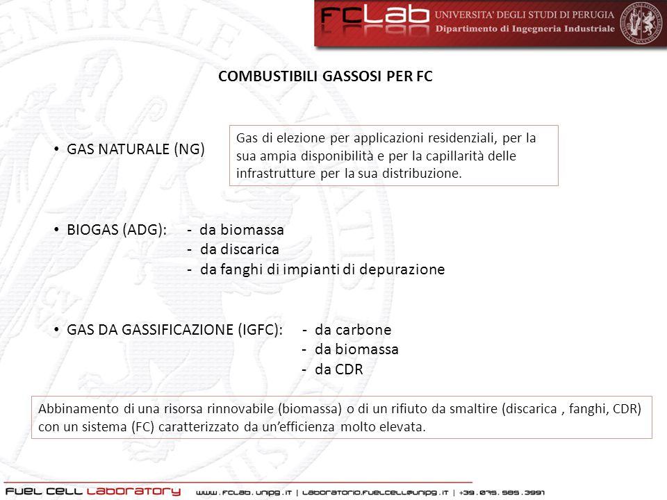 COMBUSTIBILI GASSOSI PER FC GAS NATURALE (NG) BIOGAS (ADG): - da biomassa - da discarica - da fanghi di impianti di depurazione GAS DA GASSIFICAZIONE