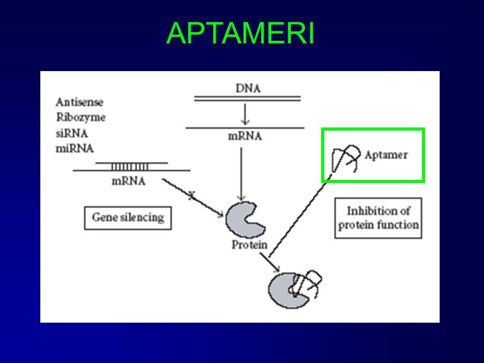 PEGAPTANIB - Macugen® (Eyetech Pharm./Pfizer) RNA aptamero diretto contro il vascular endotelial growth factor (VEGF)-165, isoforma responsabile di neovascolarizzazione oculare patologica e permeabilità vascolare; Indicazione terapeutica: degenerazione maculare associata all'età