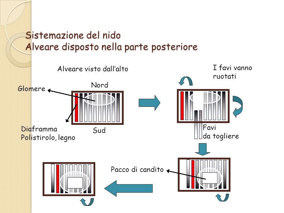 Diaframma Polistirolo, legno Pacco di candito Alveare visto dall'alto Glomere Nord Sud Favi da togliere I favi vanno ruotati Sistemazione del nido Alveare disposto nella parte posteriore