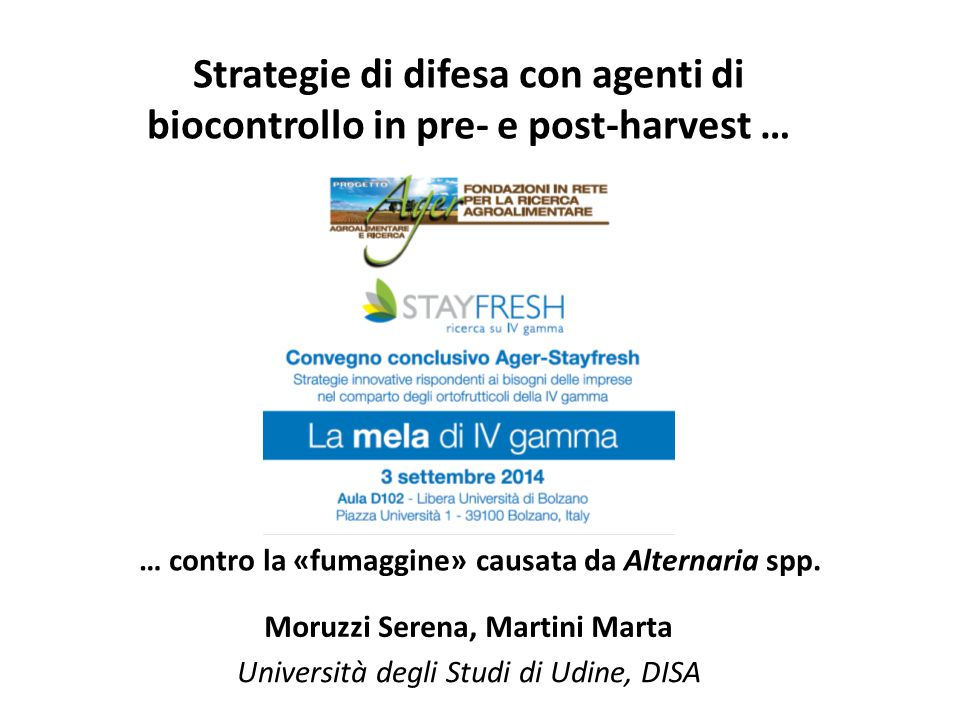 4 principi attivi sono risultati efficaci: - Difenconazolo (Score) - Iprodione (Rovral) - Penconazolo (Topas) - Cyprodinil (Chorus) Inibizione della crescita del micelio di Alternaria: 4.