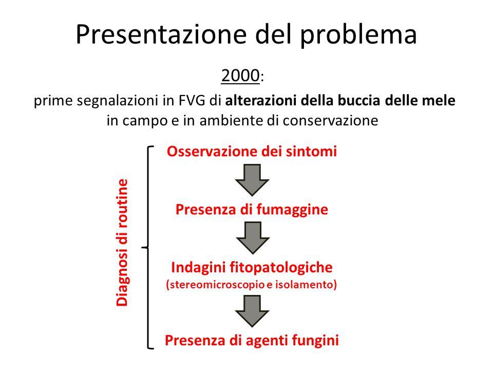 Presentazione del problema 2000 : prime segnalazioni in FVG di alterazioni della buccia delle mele in campo e in ambiente di conservazione Presenza di