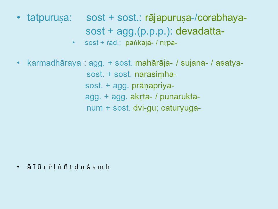 tatpuru ṣ a: sost + sost.: rājapuru ṣ a-/corabhaya- sost + agg.(p.p.p.): devadatta- sost + rad.: pa ṅ kaja- / n ṛ pa- karmadhāraya : agg.