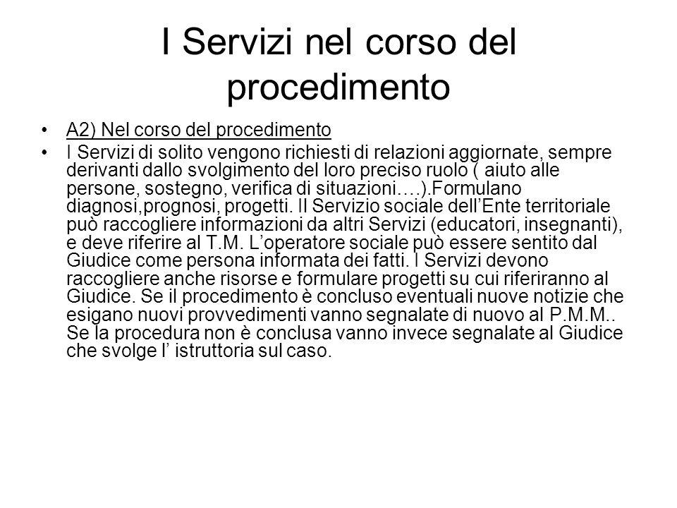 I Servizi nel corso del procedimento A2) Nel corso del procedimento I Servizi di solito vengono richiesti di relazioni aggiornate, sempre derivanti da