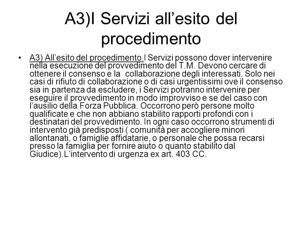 A3)I Servizi all'esito del procedimento A3) All'esito del procedimento.I Servizi possono dover intervenire nella esecuzione del provvedimento del T.M.
