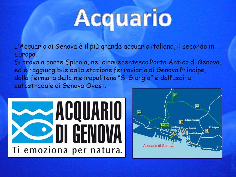 L'Acquario di Genova è il più grande acquario italiano, il secondo in Europa. Si trova a ponte Spinola, nel cinquecentesco Porto Antico di Genova, ed