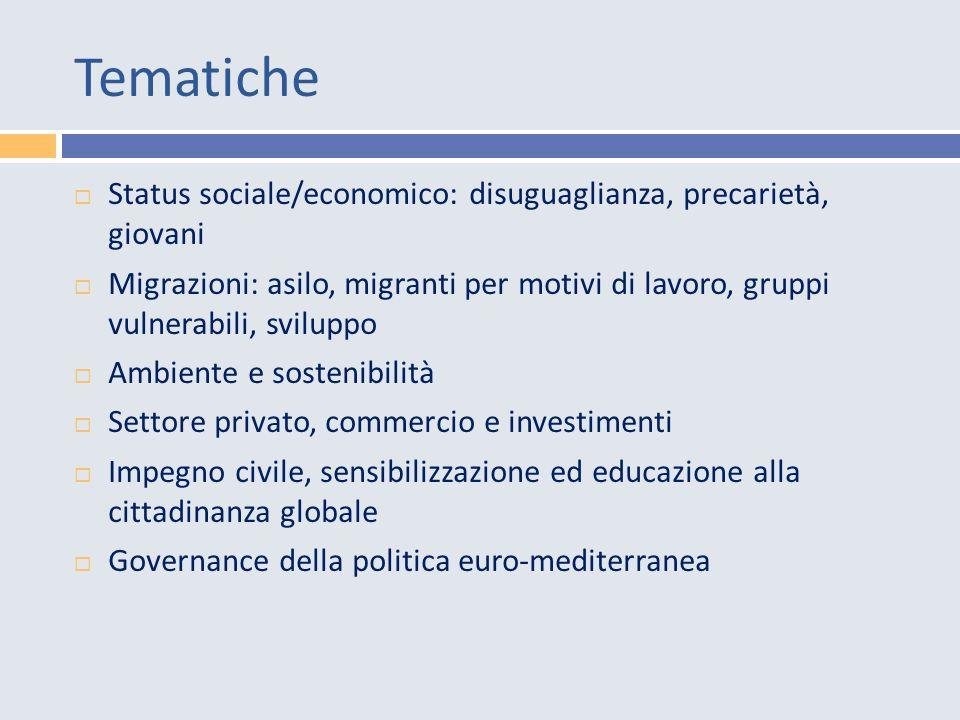 Tematiche  Status sociale/economico: disuguaglianza, precarietà, giovani  Migrazioni: asilo, migranti per motivi di lavoro, gruppi vulnerabili, sviluppo  Ambiente e sostenibilità  Settore privato, commercio e investimenti  Impegno civile, sensibilizzazione ed educazione alla cittadinanza globale  Governance della politica euro-mediterranea