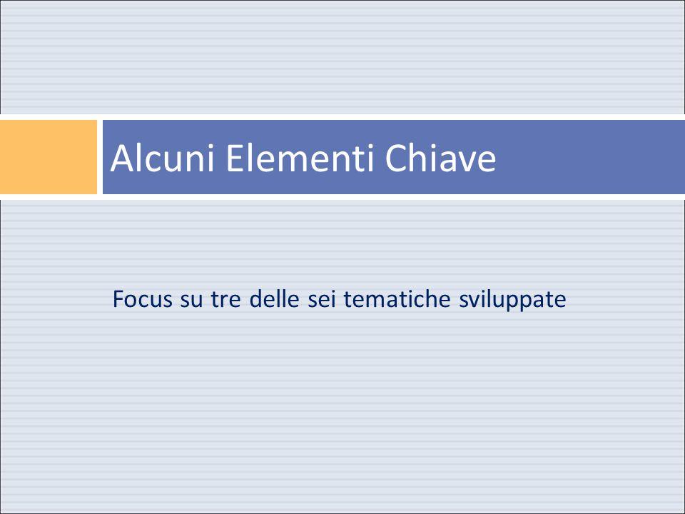 Focus su tredelle sei tematiche sviluppate Alcuni Elementi Chiave