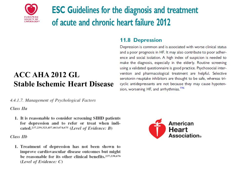 ACC AHA 2012 GL Stable Ischemic Heart Disease