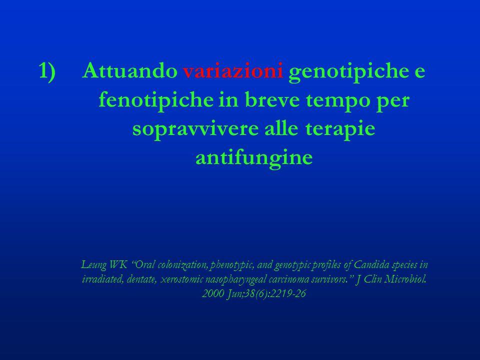 """1)Attuando variazioni genotipiche e fenotipiche in breve tempo per sopravvivere alle terapie antifungine Leung WK """"Oral colonization, phenotypic, and"""