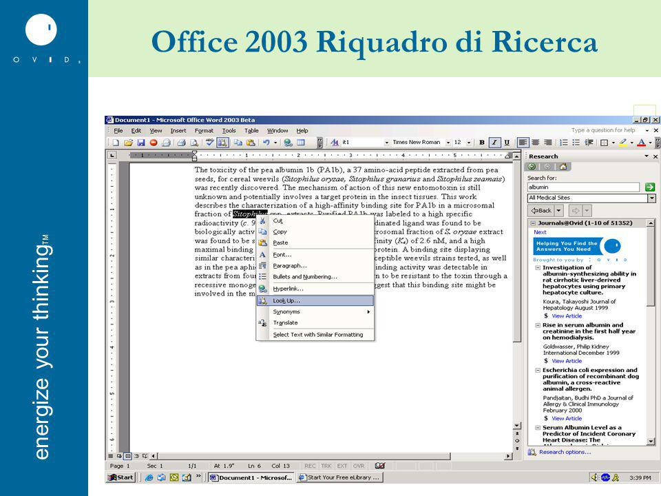 energise your thinkingenergize your thinking TM Office 2003 Riquadro di Ricerca