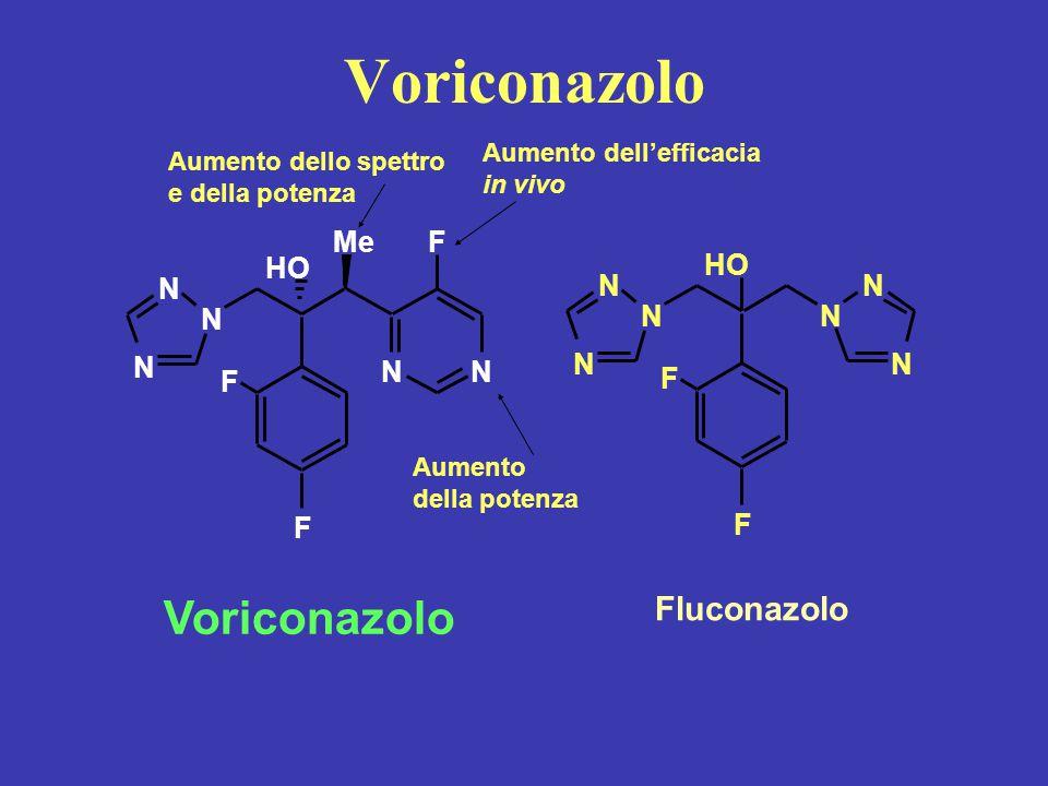 Voriconazolo N N N NN Me HO F F F Fluconazolo NN N N HO F F N N Voriconazolo Aumento dello spettro e della potenza Aumento dell'efficacia in vivo Aume