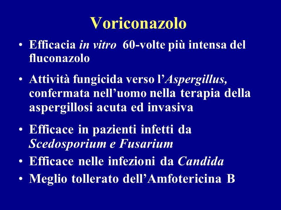 Voriconazolo Efficacia in vitro 60-volte più intensa del fluconazolo Attività fungicida verso l'Aspergillus, confermata nell'uomo nella terapia della