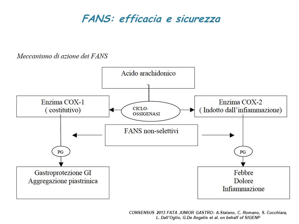 FANS: efficacia e sicurezza CONSENSUS 2013 FATA JUNIOR GASTRO: A.Staiano, C. Romano, S. Cucchiara, L. Dall'Oglio, G.De Angelis et al. on behalf of SIG