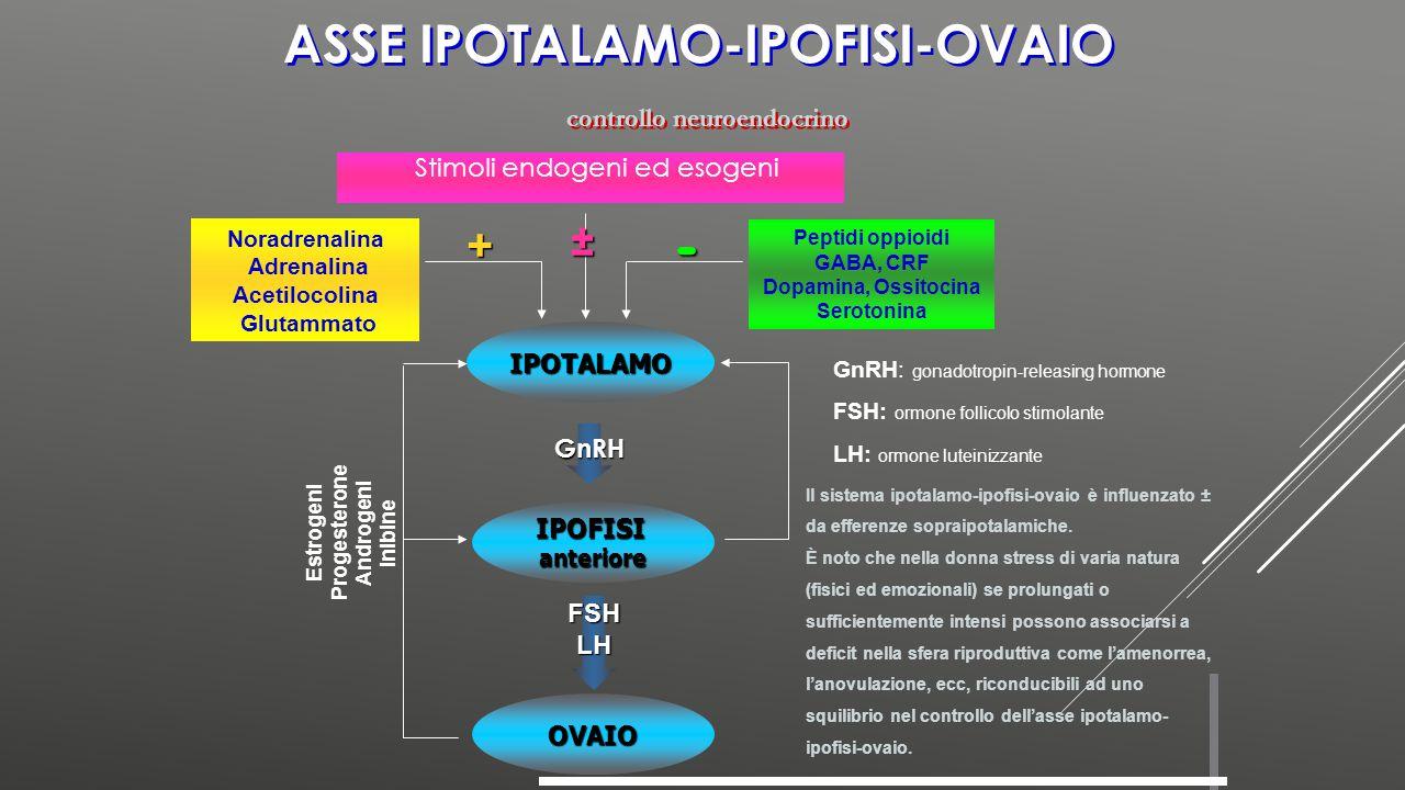 ASSE IPOTALAMO-IPOFISI-OVAIO controllo neuroendocrino IPOTALAMO GnRH IPOFISIanterioreFSHLH OVAIO OVAIO Estrogeni Progesterone Androgeni Inibine Peptid