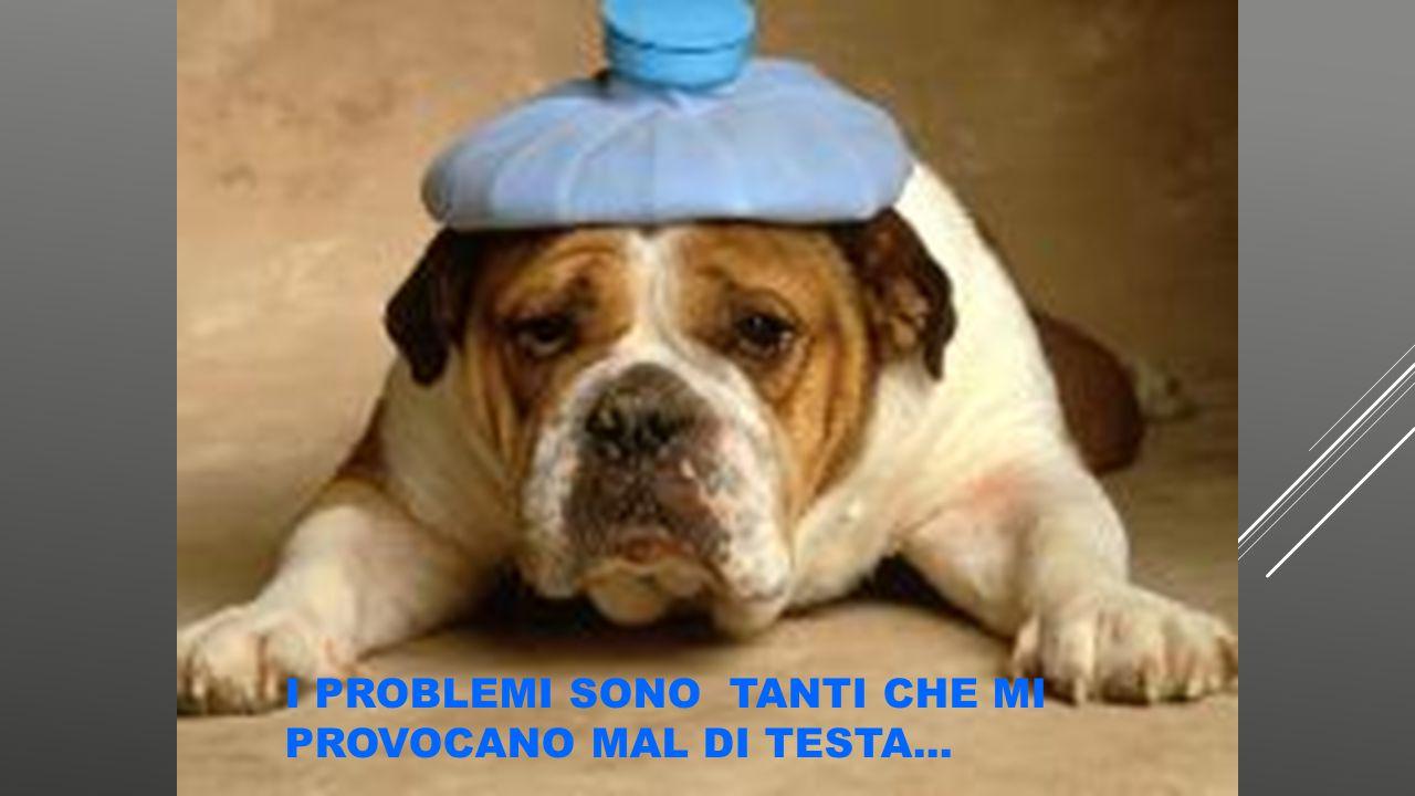 I PROBLEMI SONO TANTI CHE MI PROVOCANO MAL DI TESTA...