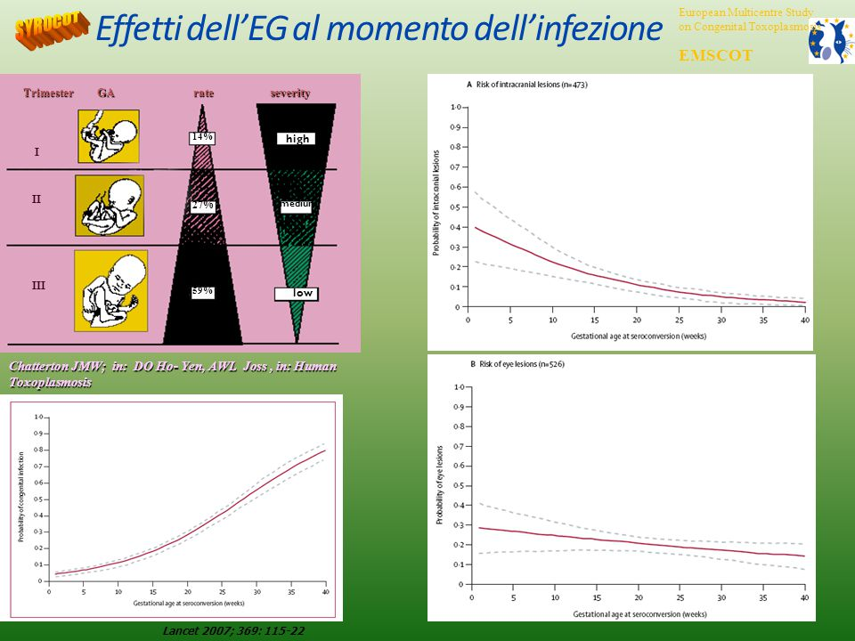 Effetti dell'EG al momento dell'infezione Chatterton JMW; in: DO Ho- Yen, AWL Joss, in: Human Toxoplasmosis TrimesterGA rate rateseverity low medium high II III 14% 27% 59% I Lancet 2007; 369: 115-22 European Multicentre Study on Congenital Toxoplasmosis EMSCOT