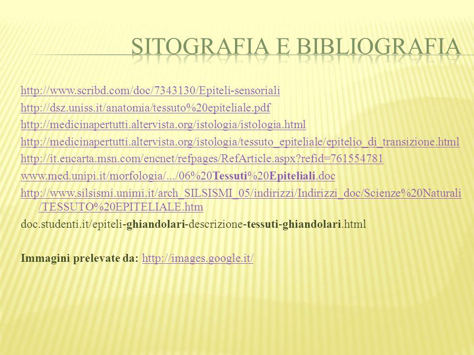 http://www.scribd.com/doc/7343130/Epiteli-sensoriali http://dsz.uniss.it/anatomia/tessuto%20epiteliale.pdf http://medicinapertutti.altervista.org/isto