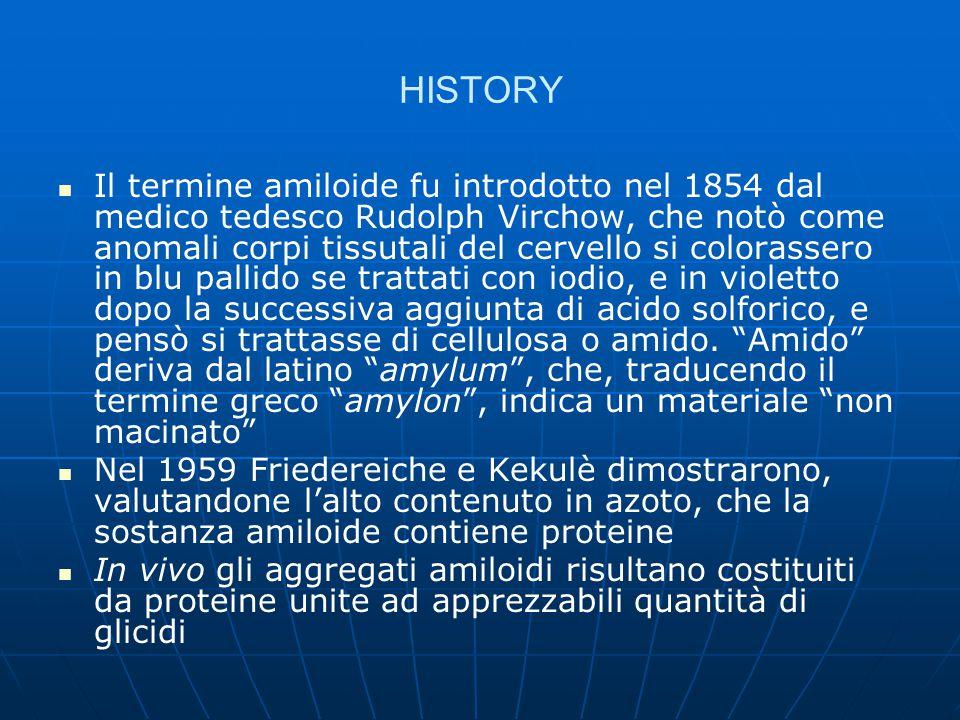 HISTORY Il termine amiloide fu introdotto nel 1854 dal medico tedesco Rudolph Virchow, che notò come anomali corpi tissutali del cervello si colorasse