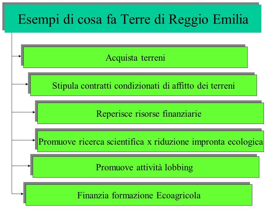Esempi di cosa fa Terre di Reggio Emilia Acquista terreni Stipula contratti condizionati di affitto dei terreni Reperisce risorse finanziarie Promuove ricerca scientifica x riduzione impronta ecologica Promuove attività lobbing Finanzia formazione Ecoagricola
